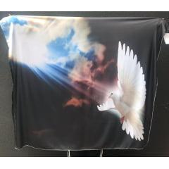 Bandeira Espírito Santo 2019
